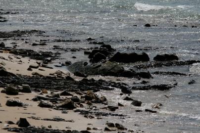 Strand von Tarifa