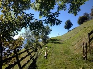 Etappe 6, Meraner Höhenweg / © Camping Korrespondent