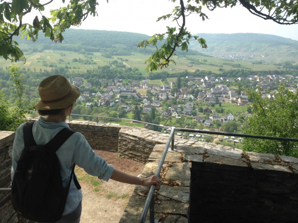 Blick von der Marienburg auf Pünderich / ©Campingkorrespondent