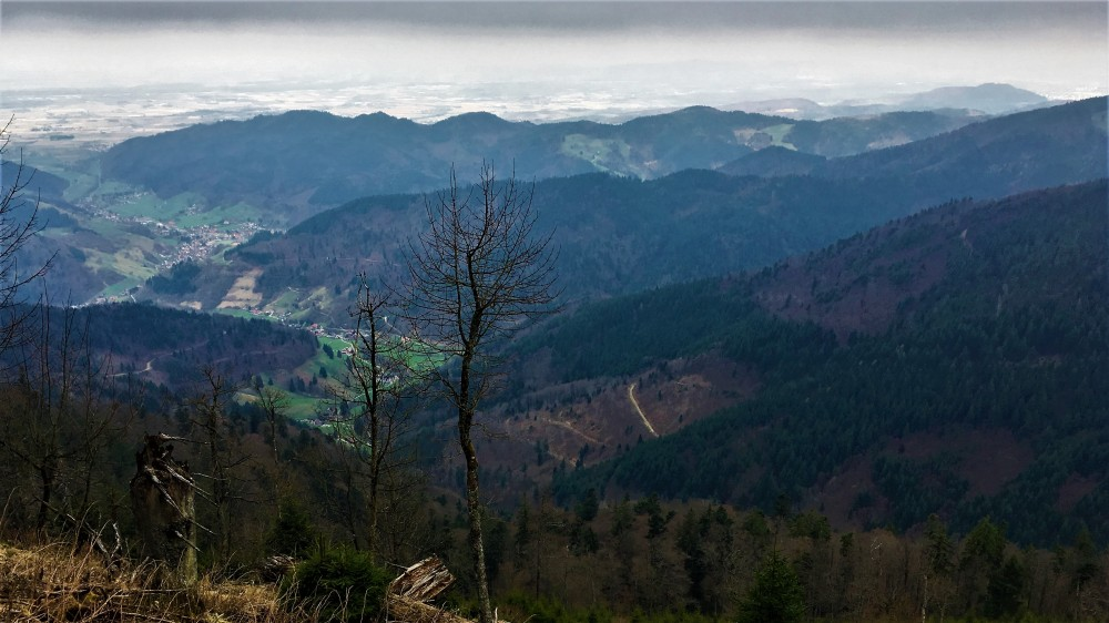Belchentour, Münstertal, Etappe 2 / Foto: © Camping Korrespondent
