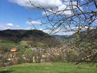Belchentour, Münstertal, Etappe 1 / Foto: © Camping Korrespondent