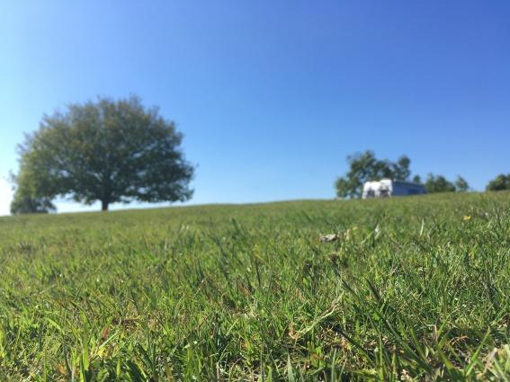 Aldridge Hill Campsite / © schön campen